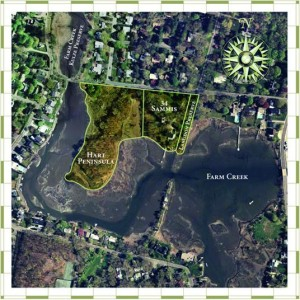 Aerial-View-of-Farm-Creek-Preserve